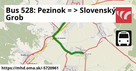 ilustračný obrázok k Bus 528: Pezinok => Slovenský Grob