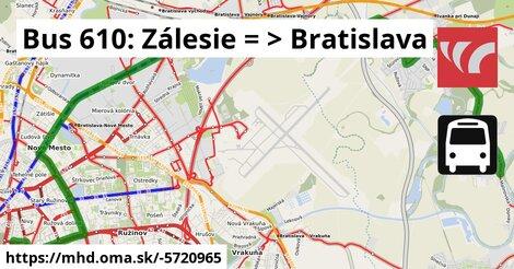 ilustračný obrázok k Bus 610: Zálesie => Bratislava