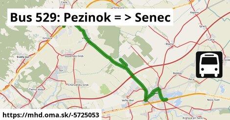 ilustračný obrázok k Bus 529: Pezinok => Senec