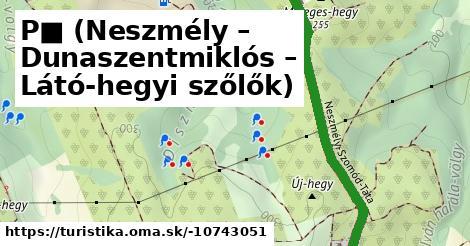 P■ (Neszmély – Dunaszentmiklós – Látó-hegyi szőlők)