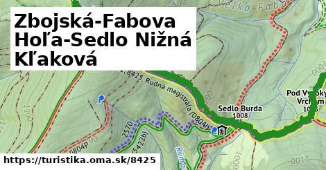 ilustračný obrázok k Zbojská-Fabova Hoľa-Sedlo Nižná Kľaková