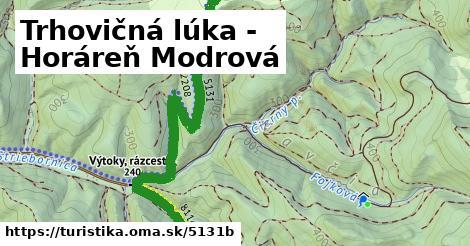 ilustračný obrázok k Trhovičná lúka - Horáreň Modrová