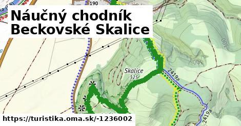 ilustračný obrázok k Náučný chodník Beckovské Skalice