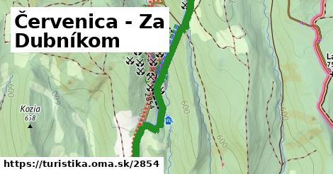 ilustračný obrázok k Červenica - Za Dubníkom