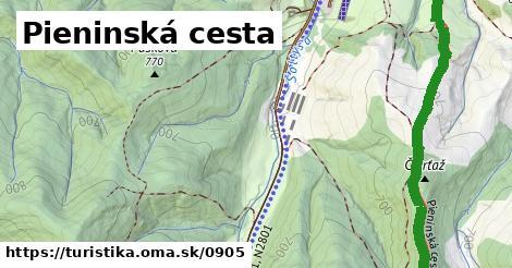 ilustračný obrázok k Podolínec - Szczawnica, PL
