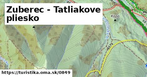 ilustračný obrázok k Zuberec - Tatliakove pliesko