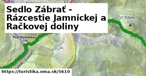 ilustračný obrázok k Sedlo Zábrať - Rázcestie Jamnickej a Račkovej doliny