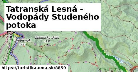 ilustračný obrázok k Tatranská Lesná - Vodopády Studeného potoka
