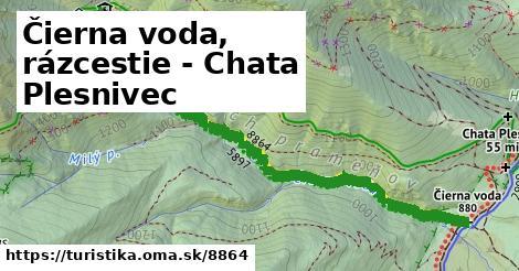 ilustračný obrázok k Čierna voda, rázcestie - Chata Plesnivec