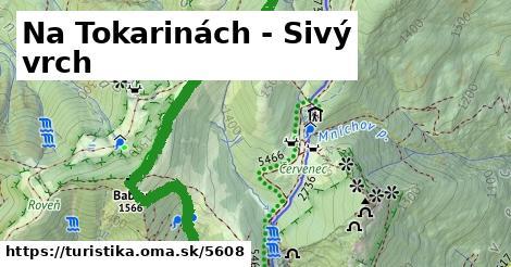 ilustračný obrázok k Na Tokarinách - Sivý vrch