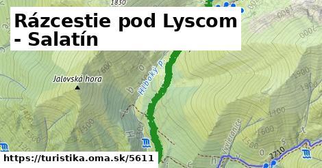 ilustračný obrázok k Rázcestie pod Lyscom - Salatín