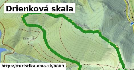 ilustračný obrázok k Drienovská skala