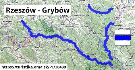Rzeszów - Grybów
