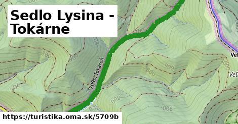 ilustračný obrázok k Sedlo Lysina - Tokárne