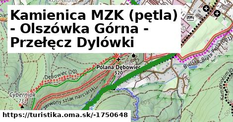 Kamienica MZK (pętla) - Olszówka Górna - Przełęcz Dylówki