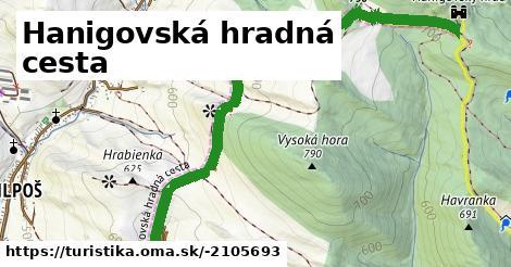 ilustračný obrázok k Hanigovská hradná cesta