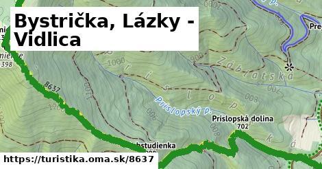 ilustračný obrázok k Bystrička, Lázky - Vidlica