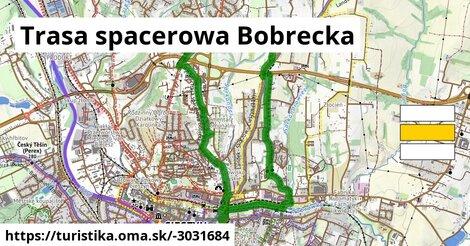 Trasa spacerowa Bobrecka