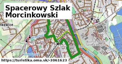 Spacerowy Szlak Morcinkowski