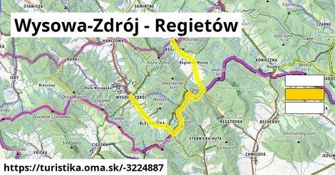 ilustračný obrázok k Wysowa-Zdrój - Regietów