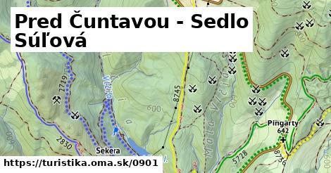 ilustračný obrázok k Pred Čuntavou - Dobšinský kopec