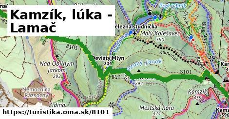 ilustračný obrázok k Kamzík, lúka - Lamač