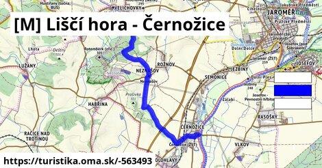 [M] Liščí hora - Černožice