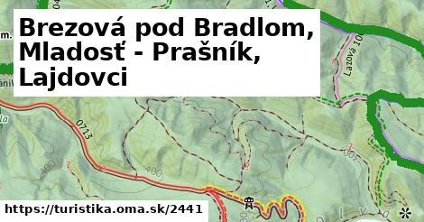 ilustračný obrázok k Brezová pod Bradlom, Mladosť - Prašník, Lajdovci