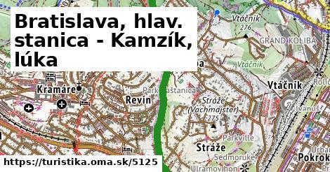 ilustračný obrázok k Bratislava, hlav. stanica - Kamzík, lúka