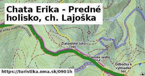 ilustračný obrázok k Chata Erika - Predné holisko, ch. Lajoška