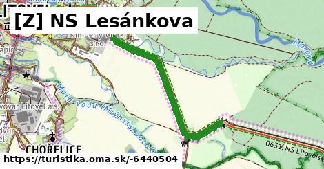 [Z] NS Lesánkova