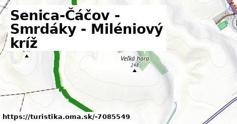 Senica-Čáčov - Smrdáky - Miléniový kríž