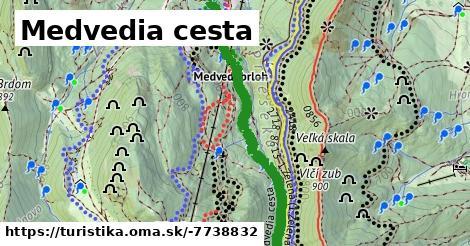 ilustračný obrázok k Medvedia cesta