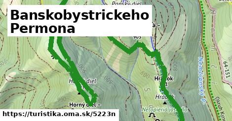 ilustračný obrázok k Banskobystrickeho Permona
