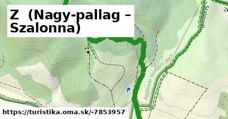 Z+ Nagy-Pallag - Szalonna