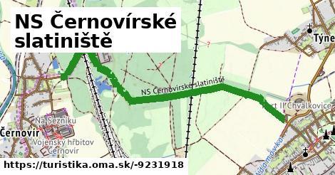 NS Černovírské slatiniště