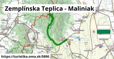 Zemplínska Teplica - Maliniak