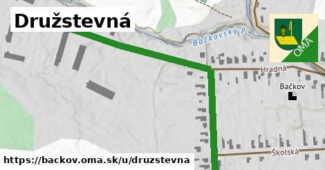 ilustračný obrázok k Družstevná, Bačkov