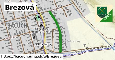 ilustrácia k Brezová, Bacúch - 467m