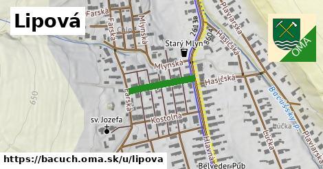 ilustrácia k Lipová, Bacúch - 222m