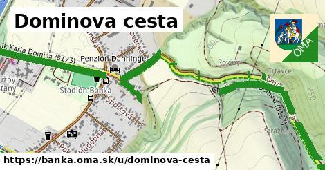 ilustračný obrázok k Dominova cesta, Banka