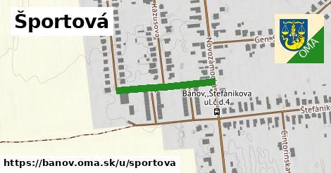 ilustrácia k Športová, Bánov - 225m
