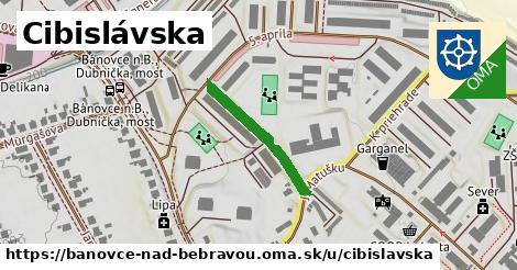 ilustračný obrázok k Cibislavská, Bánovce nad Bebravou