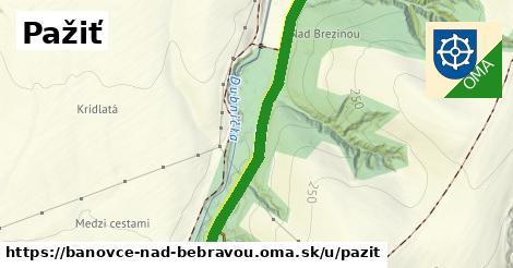 ilustrácia k Pažiť, Bánovce nad Bebravou - 1,33km