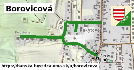 ilustrácia k Borovicová, Banská Bystrica - 0,83km