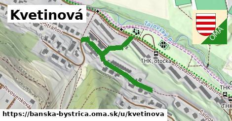 ilustrácia k Kvetinová, Banská Bystrica - 205m