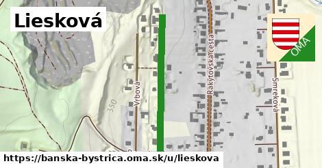 ilustračný obrázok k Liesková, Banská Bystrica