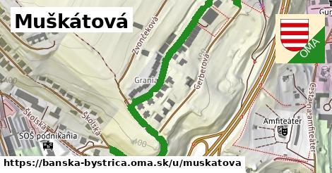 ilustrácia k Muškátová, Banská Bystrica - 424m
