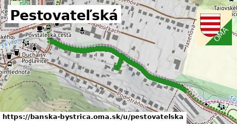 ilustračný obrázok k Pestovateľská, Banská Bystrica