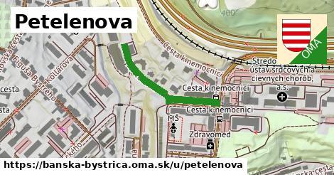 ilustračný obrázok k Petelenova, Banská Bystrica